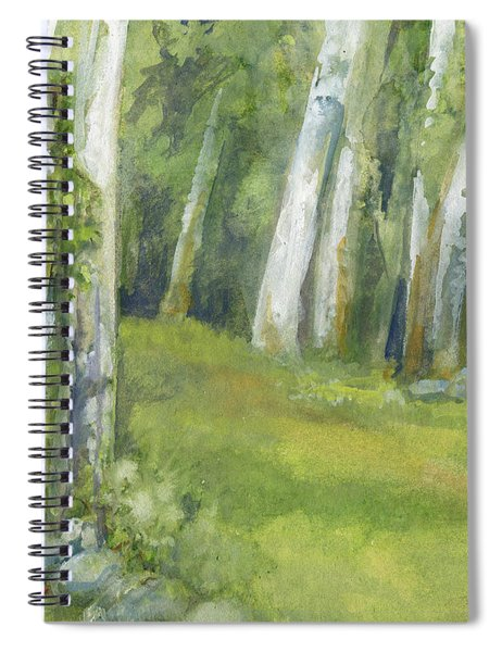 Birch Trees And Spring Field Spiral Notebook