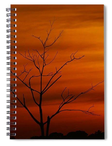 Bird At Play Spiral Notebook