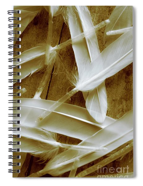 Bird-less Of A Feather Spiral Notebook