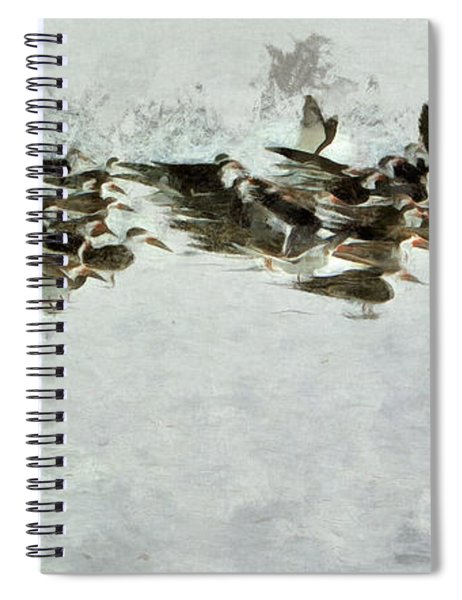 Bird Play Spiral Notebook