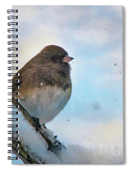 Birdie Its Cold Outside Spiral Notebook