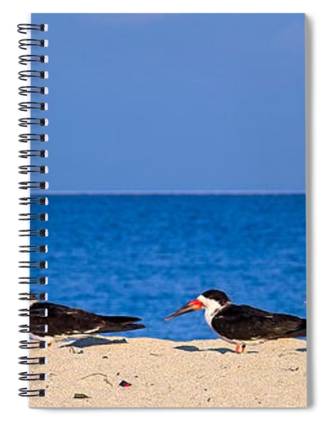 Birdline Spiral Notebook