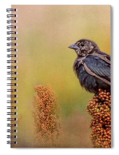 Birds In The Milo Crop Spiral Notebook