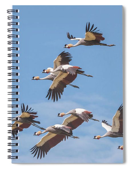 Birds Of The Same Feather. Spiral Notebook