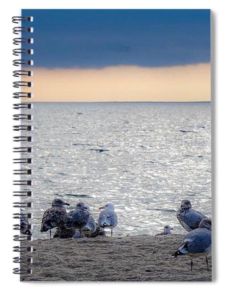 Birds On A Beach Spiral Notebook