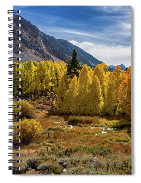 Bishop Creek Aspen Spiral Notebook
