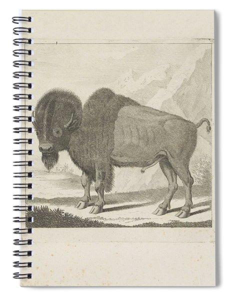 Bison, Anonymous, After Gerrit Van Den Heuvel, 1735 - 1859 Spiral Notebook