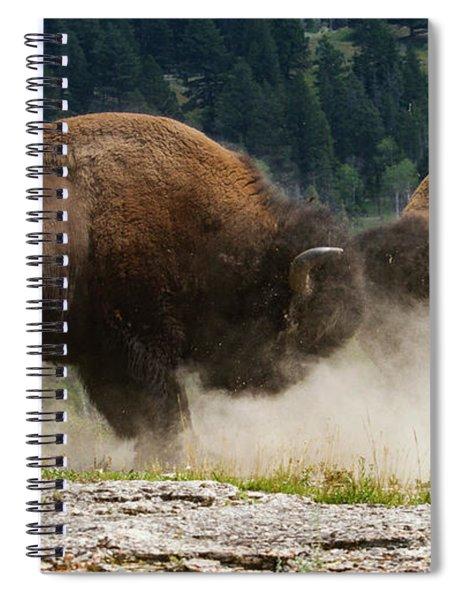 Bison Duel Spiral Notebook