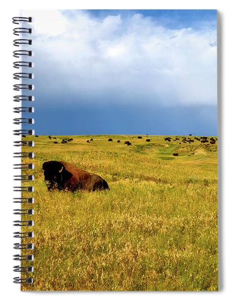 Bison In The Badlands Spiral Notebook