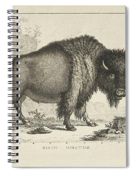 Bison, Leendert Brasser, After Gerrit Van Den Heuvel, 1766 - 1793 Spiral Notebook