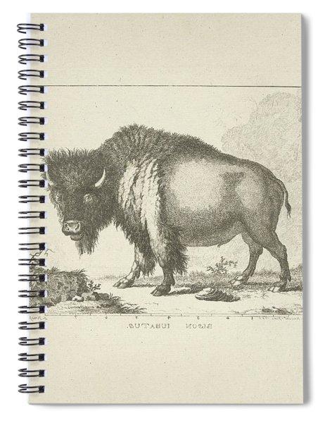 Bison, Leendert Brasser, After Gerrit Van Den Heuvel, 1766 - 1793 V Spiral Notebook