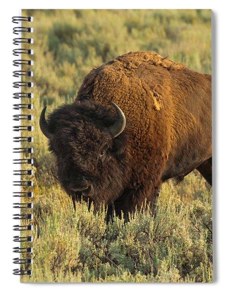 Bison Spiral Notebook