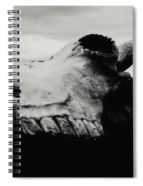 Bison Skull Black White Spiral Notebook