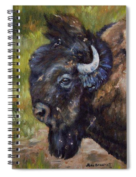 Bison Study 5 Spiral Notebook
