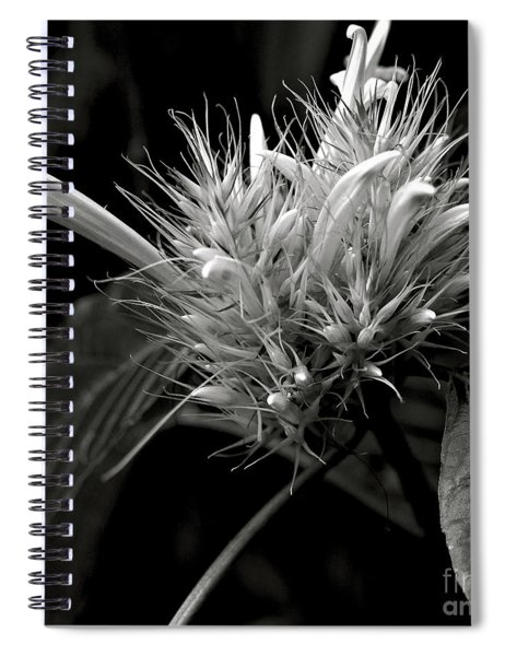 Bizarre Flower Charm Spiral Notebook