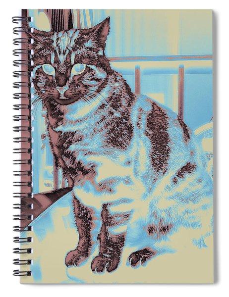 Bk #1 Spiral Notebook