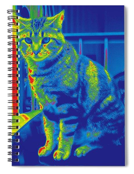 Bk #2 Spiral Notebook