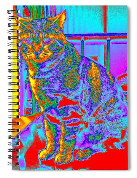Bk #3 Spiral Notebook