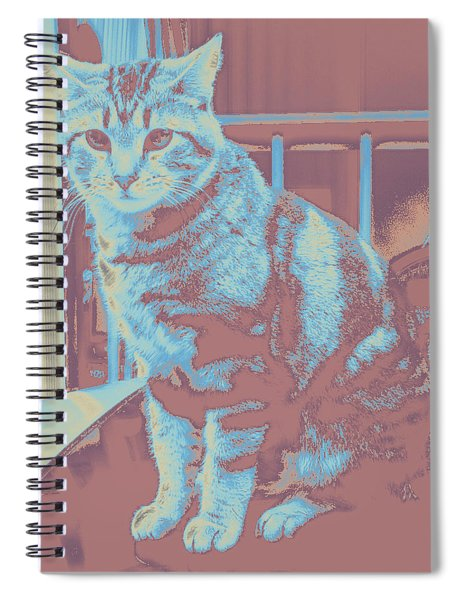 Bk #5 Spiral Notebook