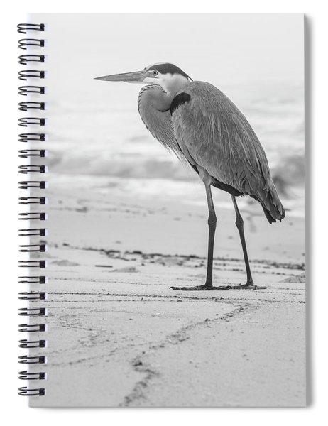 Black And White Blue Heron Alabama  Spiral Notebook