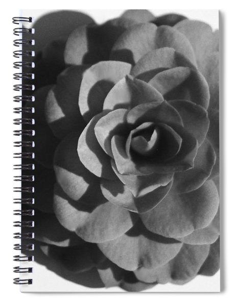 Camellia In Black And White Spiral Notebook