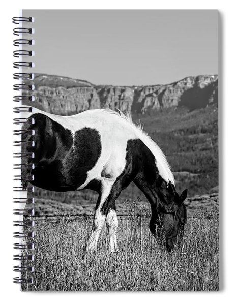 Black And White Horse Grazing In Wyoming In Black And White  Spiral Notebook