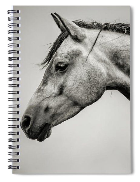 Black And White Horse Head Spiral Notebook