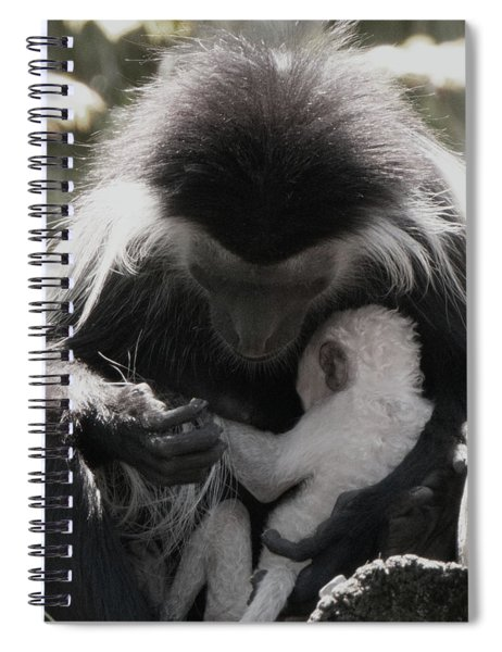 Black And White Image Of Colobus Monkeys Spiral Notebook