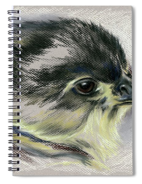 Black Australorp Chick Portrait Spiral Notebook