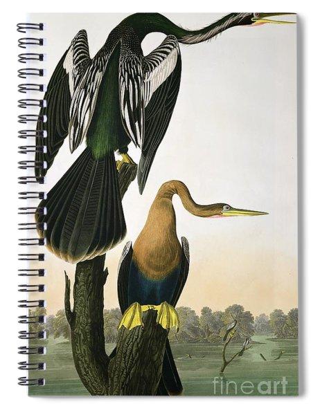 Black Billed Darter Spiral Notebook