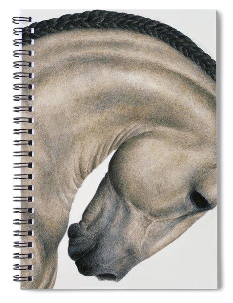 Black Braid Spiral Notebook by Pat Erickson