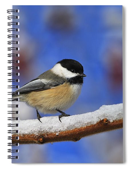 Black-capped Chickadee In Sumac Spiral Notebook