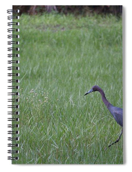 Black Egret Spiral Notebook
