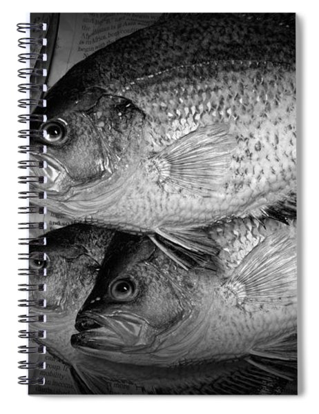 Black Crappie Panfish With Fish Filet Knife In Black And White Spiral Notebook