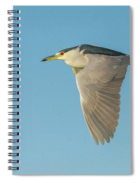 Black-crowned Night Heron 0403-022618-1cr Spiral Notebook