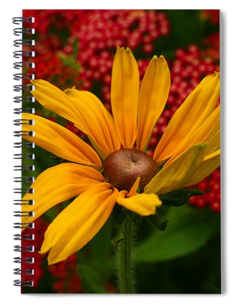 Black-eyed Susan And Yarrow Spiral Notebook