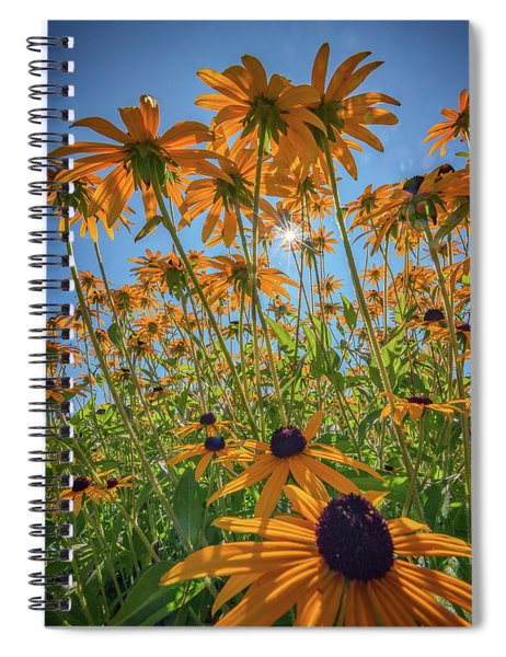 Black-eyed-susans Bask In The Sun Spiral Notebook