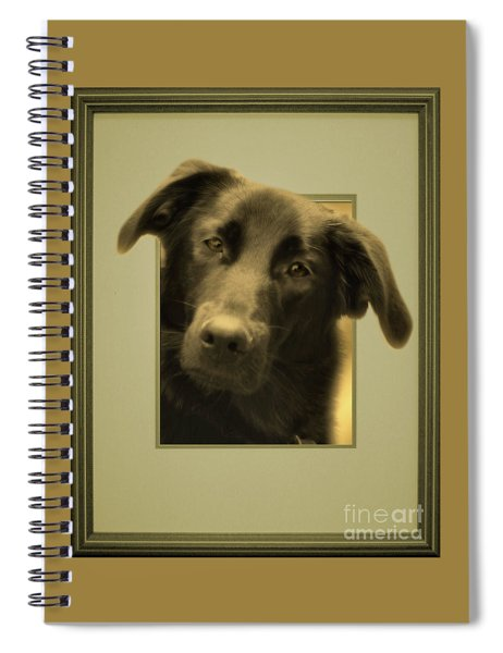 Black Labrador Peeking Out Spiral Notebook