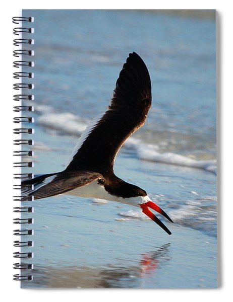 Black Skimmer Spiral Notebook