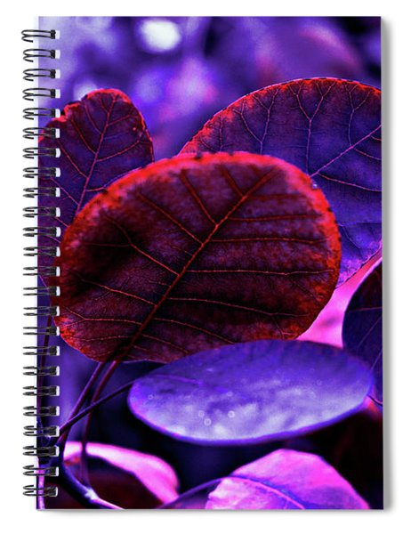 Bleeding Violet Smoke Bush Leaves - Pantone Violet Ec Spiral Notebook