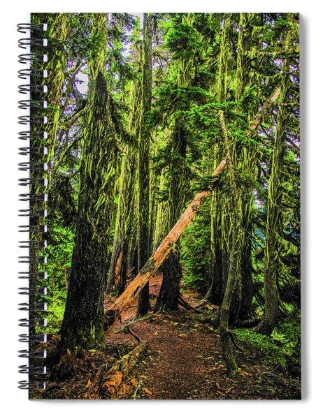 Blocked Trail Spiral Notebook