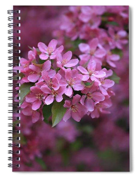 Blooming Pink Fantasy Spiral Notebook