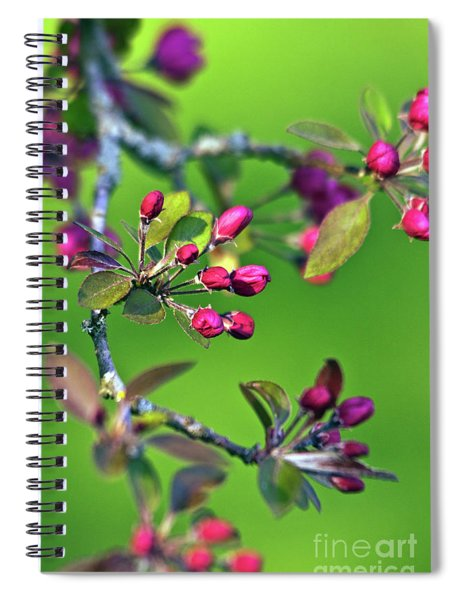 Blooming Spring Poetry Spiral Notebook