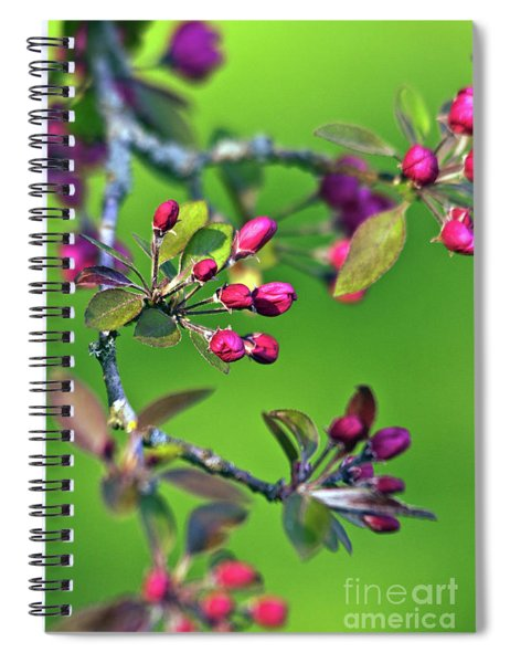 Blooming Spring Poetry Spiral Notebook