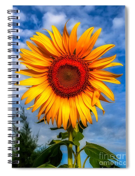 Blooming Sunflower  Spiral Notebook