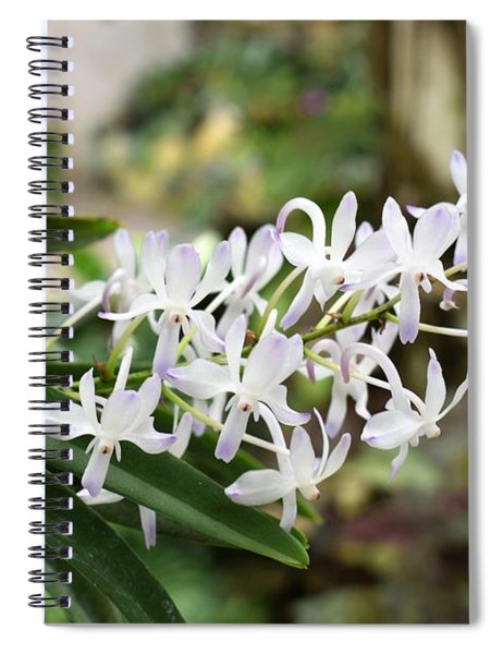 Blooming White Flower Spike Spiral Notebook