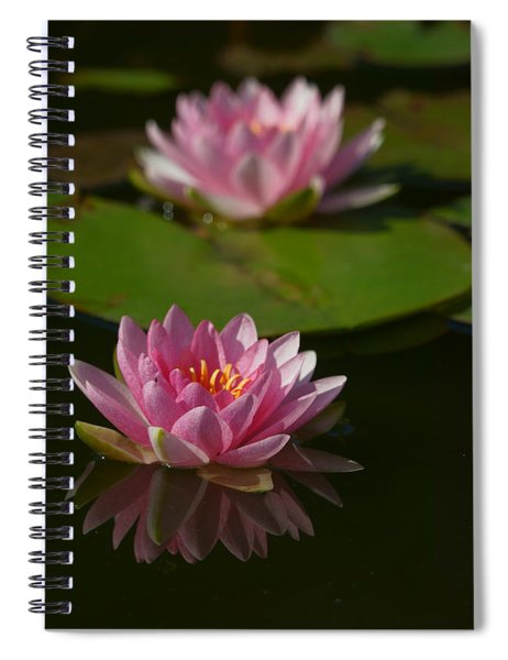 Blossoms And Lily Pads 9 Spiral Notebook