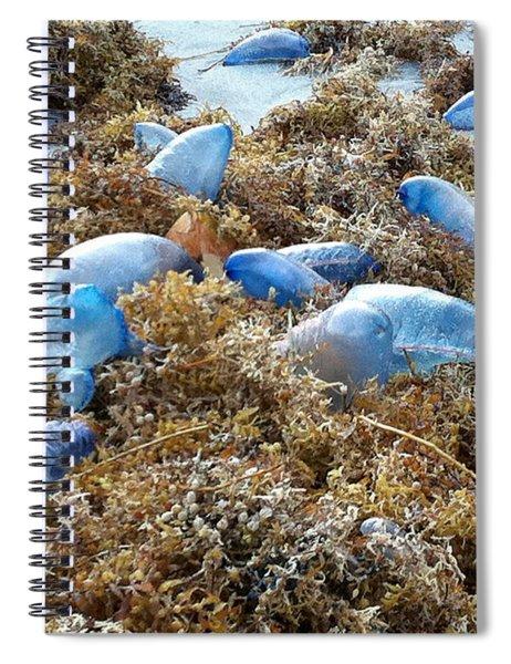 Seeing Blue At The Beach Spiral Notebook by Karen Zuk Rosenblatt