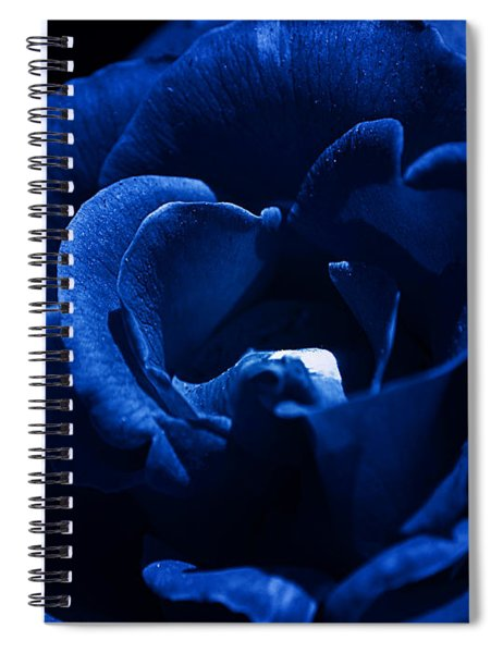 Blue Blue Rose Spiral Notebook