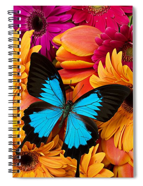 Blue Butterfly On Brightly Colored Flowers Spiral Notebook